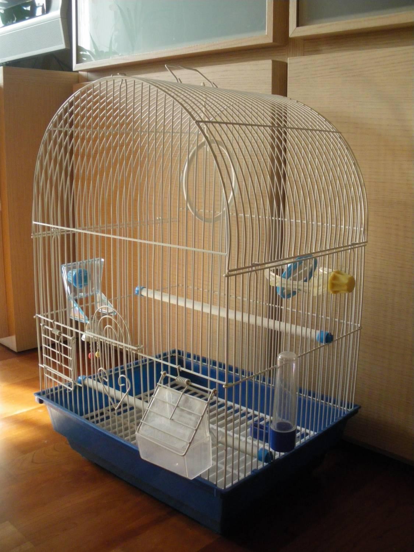 Как в домашних условиях ухаживать за 8